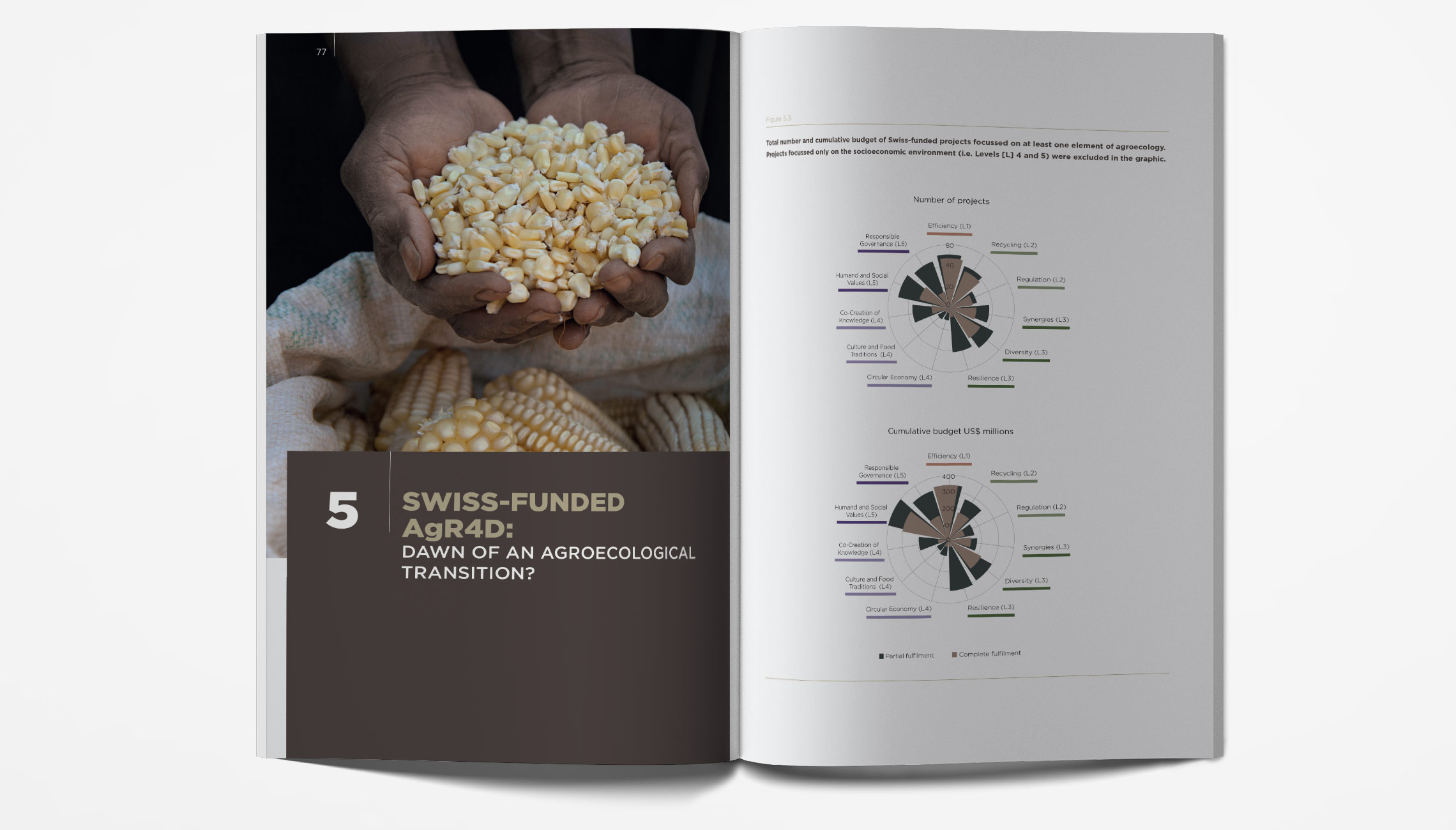 publication: IPES FOOD and BIOVISION Money Flows Report  - image 2