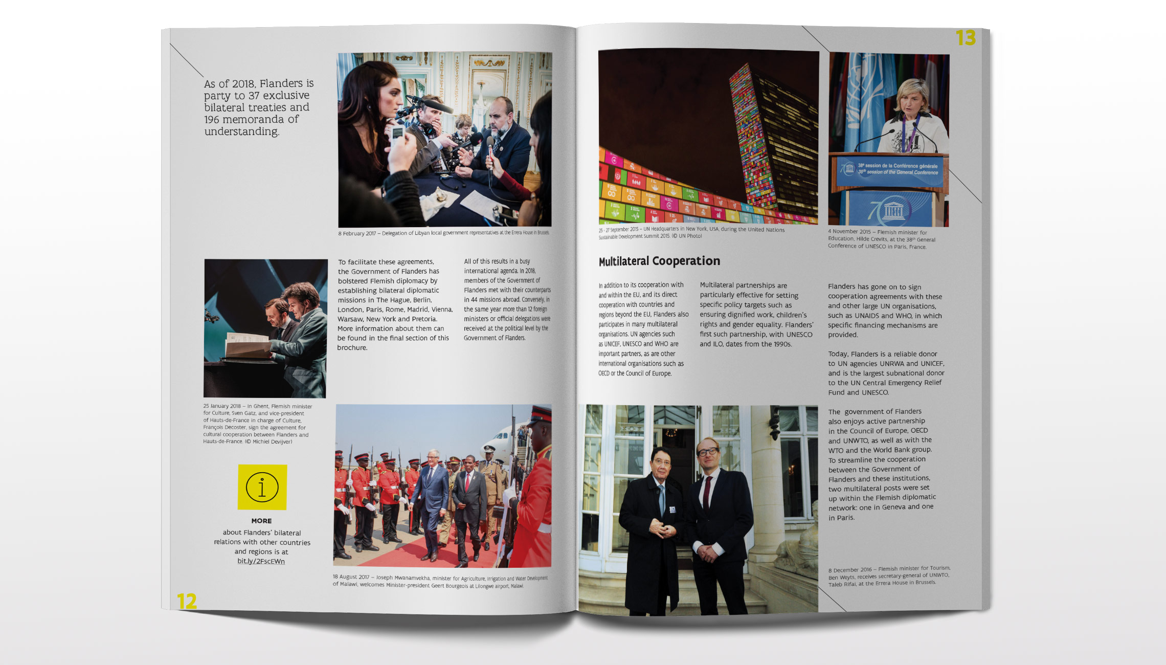publication: Flanders is international - image 2