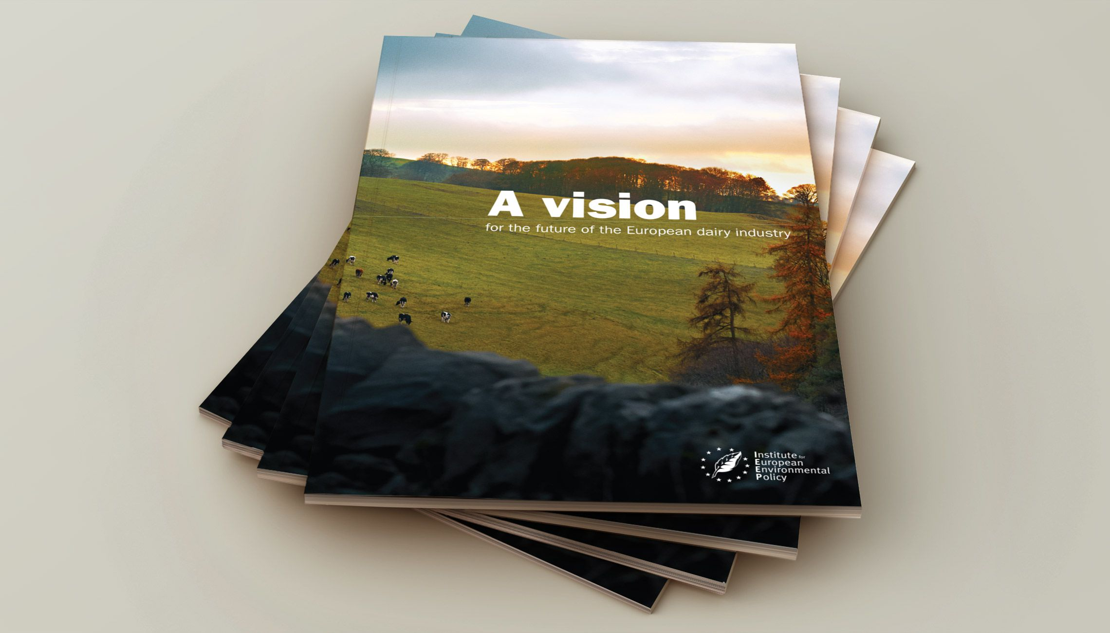 publication: Brochure Vision Diary Industry - image 1
