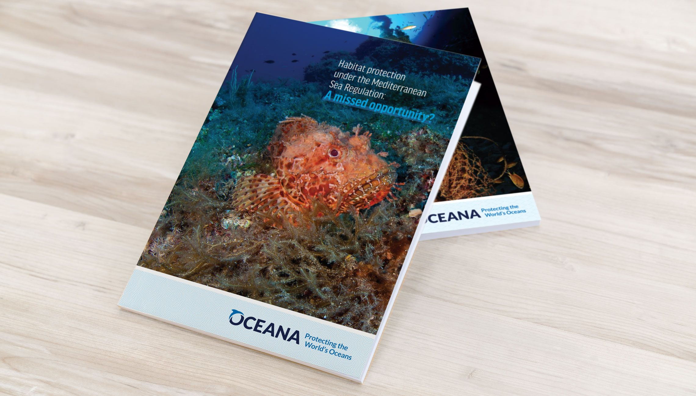 publication: Publications on marine reserves and the Mediterranean Sea Regulation - image 1