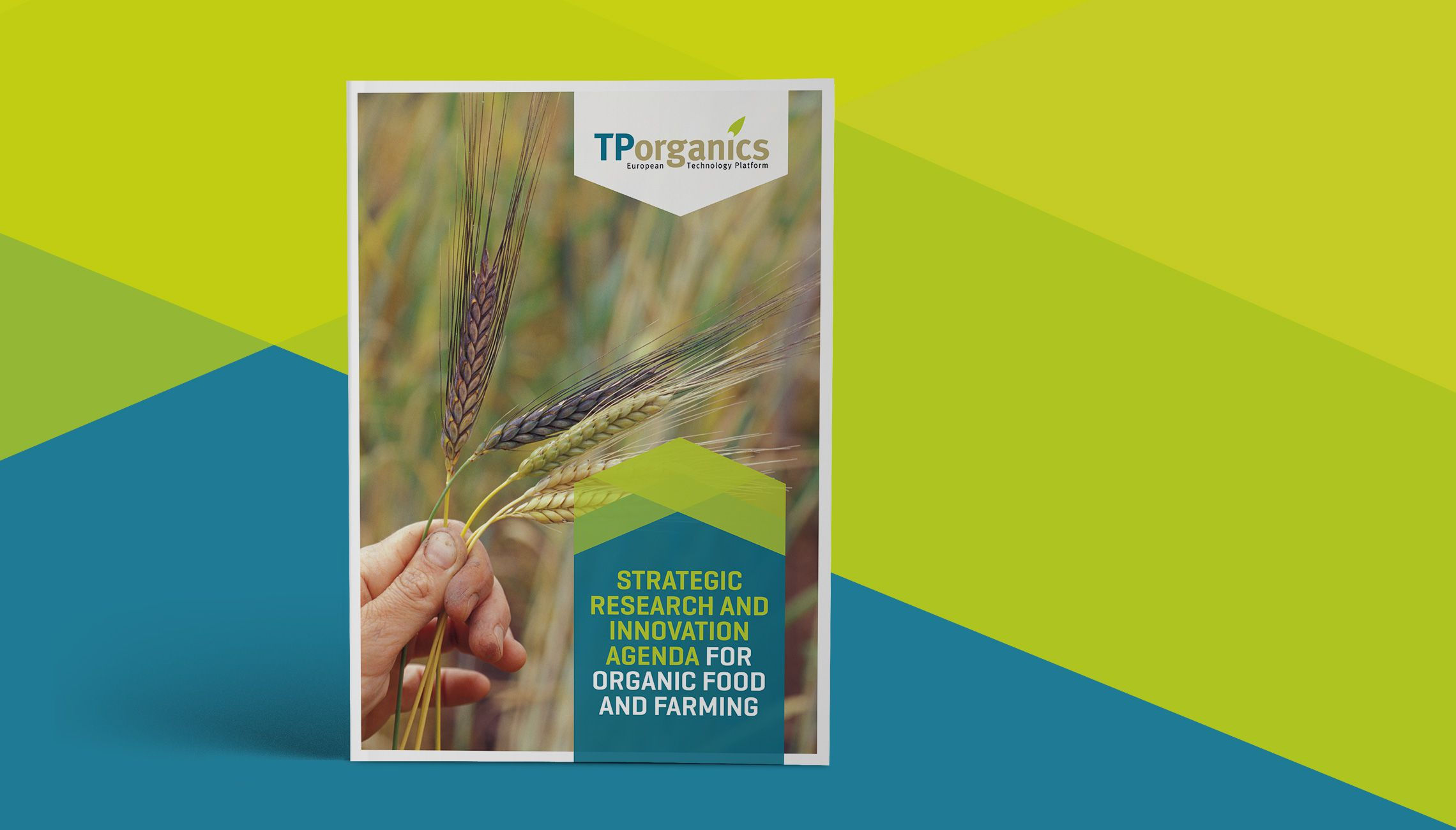 publication: Brochure TPO strategic research - image 1